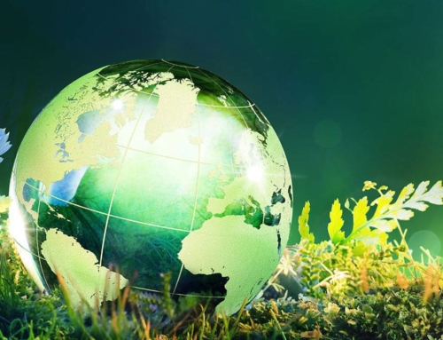 Earth Day – Our Green vision